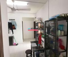 Room For Rent in Jb by Owner - Image 13